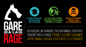 Lancement De La Campagne Annuelle Dinformation Et Prevention Contre Rage
